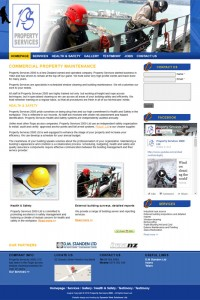 kiwi website developers